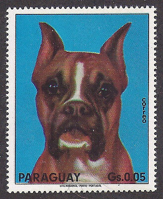 Dog Photo Head Study Portrait Postage Stamp Cropped Show BOXER Paraguay 1983 MNH
