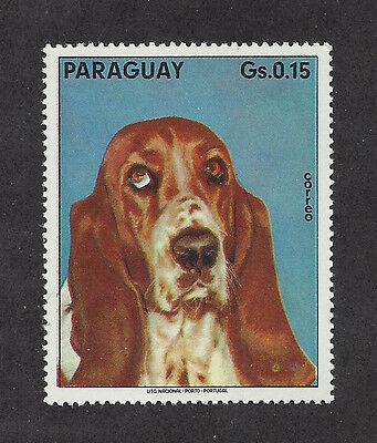 Dog Photo Head Study Portrait Postage Stamp BASSET HOUND Paraguay MNH