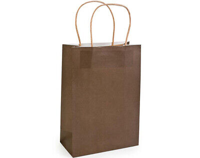 SALE -  12 Medium Brown Kraft Bags for Gifts or Crafts - 230mm Tall