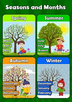 A3 Seasons and Months - Childrens Wall Chart Educational Childs Poster Classroom