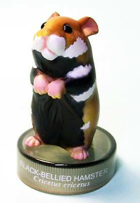 Kaiyodo Bottle Cap Figure Hamster's Lunch European black bellied hamster new