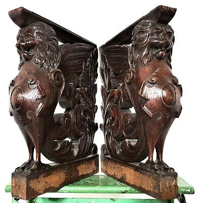 PAIR HERALDIC LION CORBEL BRACKET Antique french carved wood salvaged sculpture