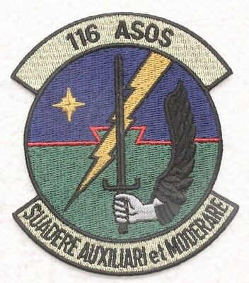 USAF Air Force Patch: 116th Air Support Operations Squadron - subdued