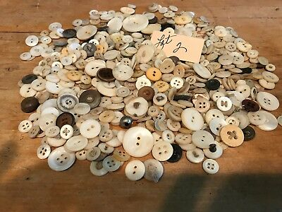 Lot Old Antique Mother of Pearl Shirt Sewing Buttons Shell 18801920 Vintage Iowa