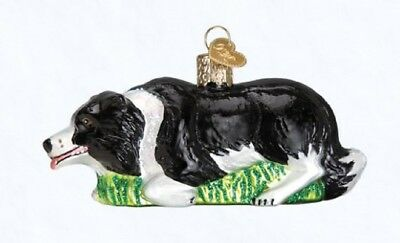 Old World Christmas Herding Border Collie Dog Glass Ornament 12510 FREE BOX Pet