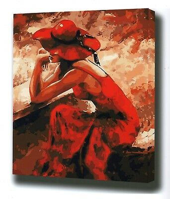 "LADY IN RED ABSTRACT PAINTING PAINT BY NUMBERS CANVAS KIT 20 x 16"" FRAMELESS"