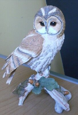 Country Artists Model Of Tawny Owl Ca06317