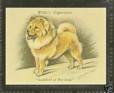 1940 Reissue LUCY DAWSON Dog Art Full Body Wills Cigarette Card Red CHOW CHOW