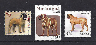 Dog Art & Photo Full Body Portrait Postage Stamp Collection BULLMASTIFF 3 x MNH