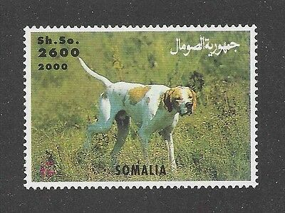 Dog Photo Body Study Portrait Postage Stamp ENGLISH POINTER Somalia 2000 MNH