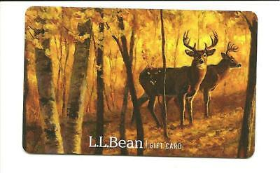 L L Bean Gift Card No $ Value Collectible Deer Bucks Trees Forest