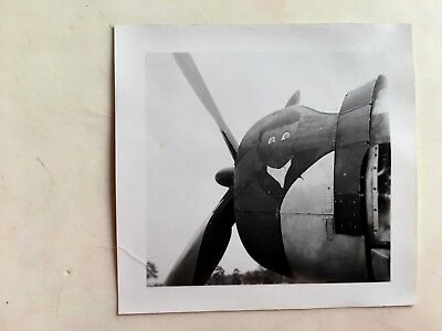 Wwii Photo  368Th Fighter Group P-47 Thunderbolt Nose Art