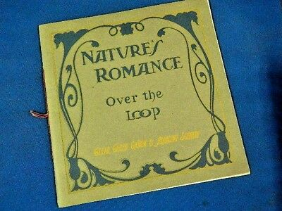 """1905 - Nature's Romance """"over The Loop"""" - By Frank S. Thayer"""
