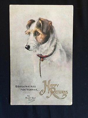 Vintage Collectable Postcard - Tuck's Oilette - Sketches of Doggies -Fox Terrier