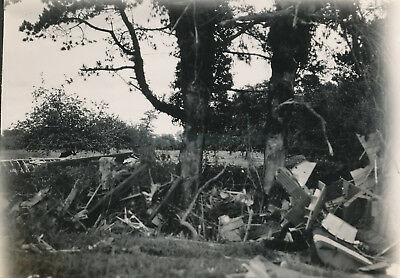 1944 D-Day Normandy USAAF 435th TCG 77th TCS Glider airplane crash Photo #20