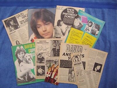 DAVID CASSIDY ~ VINTAGE 1970s CLIPPINGS