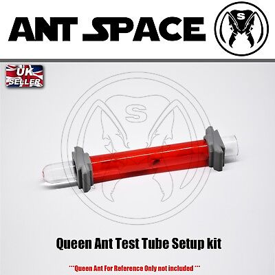 Queen Ant Test Tube Setup kit