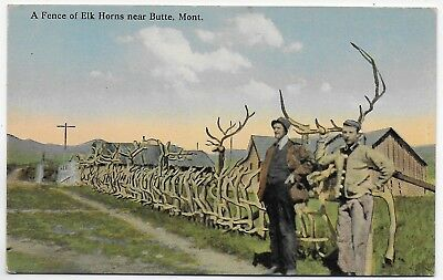 Old Postcard  Men by a Fence Made of  Elk Horns near  Butte Montana  (#2396)