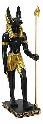 "Large Egyptian God Of The Dead Mummification Anubis With Was Staff Statue 21.5""H"