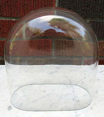 Vintage Antique Victorian Oval Cloche Glass Display Dome