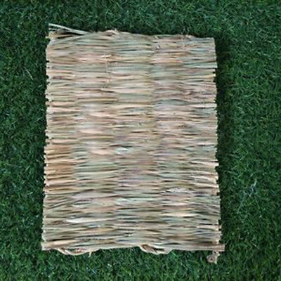Pet Animal Hamster Grass Chew Mat Breakers Toy Rabbit Rat Guinea Pig House pad