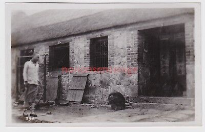 China Wei-Hai-Wei Typical Street Scene Pig Real Photo Postcard 1920 - 395