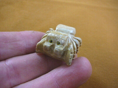 (Y-SPI-17) TARANTULA spider gem stone carving SOAPSTONE love little baby spiders