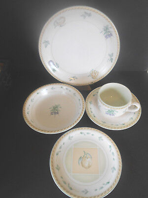 Oneida Stoneware 5 Piece Place set Dinner & Salad Plate Cup Saucer & Pasta Bowl
