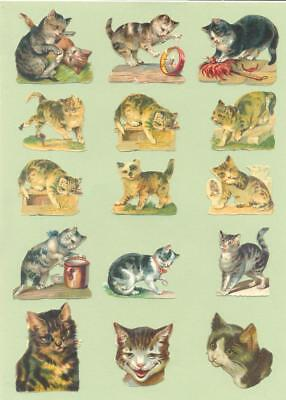 Victorian Die Cut Scraps, Original, Cats and Kittens   Y24