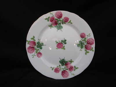 Hammersley  - CLOVER 4177 - Bread and Butter Plate