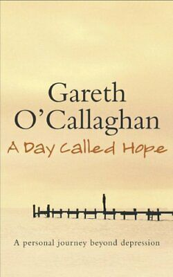 A Day Called Hope: A personal journey beyond... by O'callaghan, Gareth Paperback