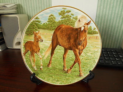 crown staffordshire mare and foal plate fine bone china made in england