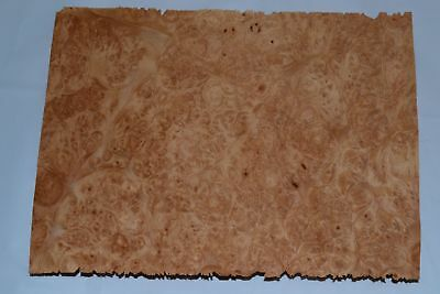 Oak Wood Veneer Sheets 6.5 x 31 inches 1//42nd thick                     F8633-43