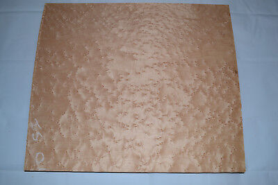 Birdseye Maple Raw Wood Veneer Sheets 14 x 16 inches  1/42nd thick   E4706-36