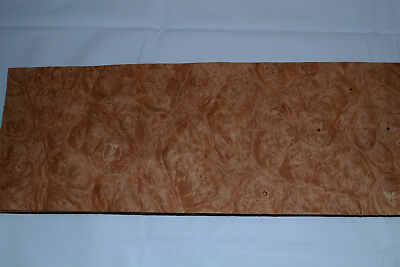 Chestnut Burl Raw Wood Veneer Sheets 6 x 17 inches 1/42nd thick        E4712-46