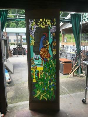 Beautiful Stained Glass Peacock Large Panel In A Wood Frame