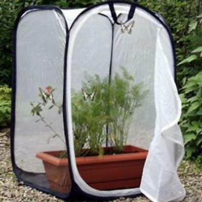 UK Praying Mantis Stick Insect Cage Butterfly Chameleon Pop-up Housing Enclosure