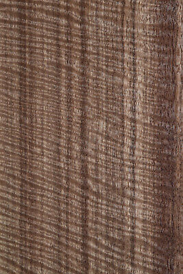 Indian Laurel Raw Wood Veneer Sheets 10.5 x 46 inches 1/42nd            E8315-10