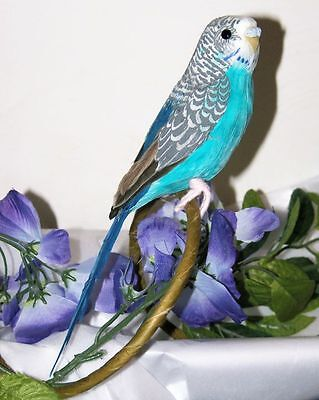 "Blue PARAKEET BUDGIE REPLICA Collectible FAKE taxidermy 8"" Bird prop Tropical"