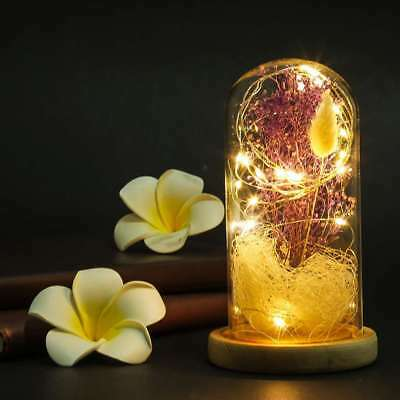 Flower with LED in Glass Dome,Gift for Valentine's Day Wedding