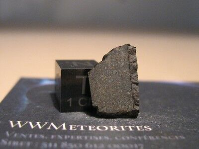 Meteorite NWA 11751 - The only meteorite classified CO3.05