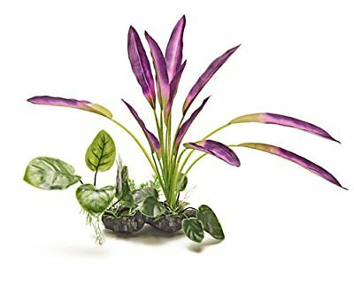 - Beautiful Realistic Aquarium Plant With Base 12 /30 Cm High. New For 2017