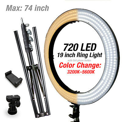 "19"" LED Dual color Dimmable Ring Light Kit w/ Camera Holder & Stand"