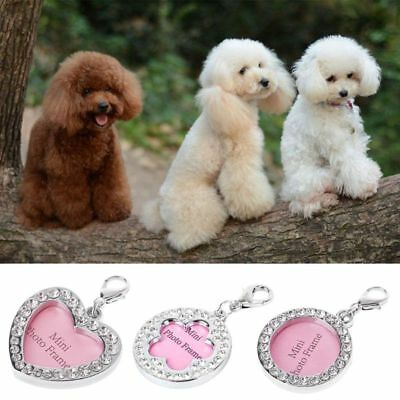 Crystal Rhinestone Pet Puppy ID Tag Collar Neck Personalized Dog Cat Name Charms