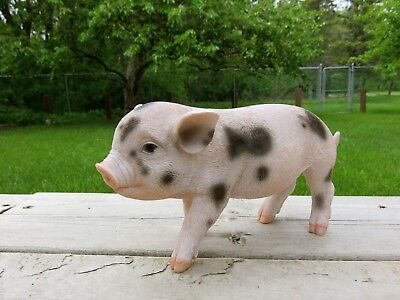 Spotted Pig 9 in.standing animal farm piglet oinker resin figurine statue new