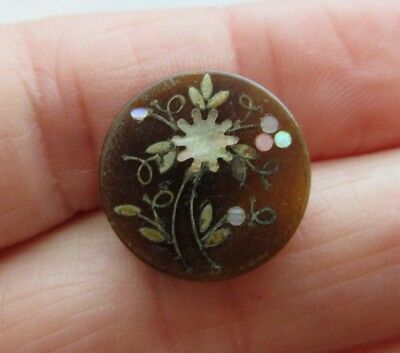 """Beautiful Antique 19th C Honey Blond HORN Inlay BUTTON Inlaid Flowers 3/4"""" (R17)"""