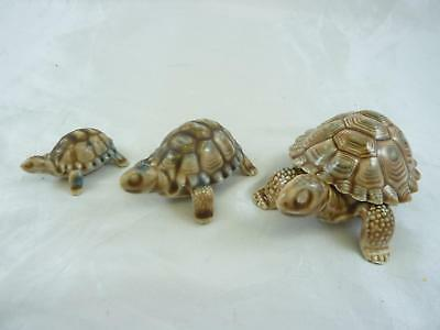 Set of Three Wade Tortoises - Whimsies & Trinket Box