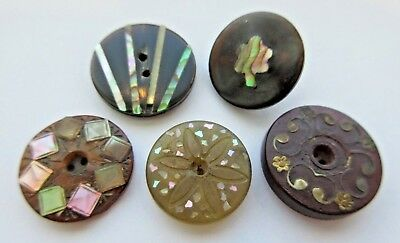 Fabulous Lot of 5 Antique HORN Inlay BUTTONS Inlaid MOP, Abalone Shell+ (S2)