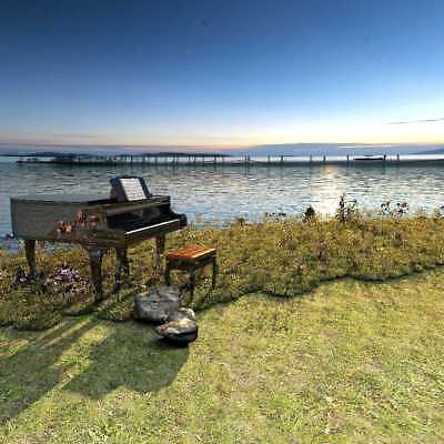 Grass Sea Piano Chair Bridge CP Photography Backdrop Printed Background AUT-024