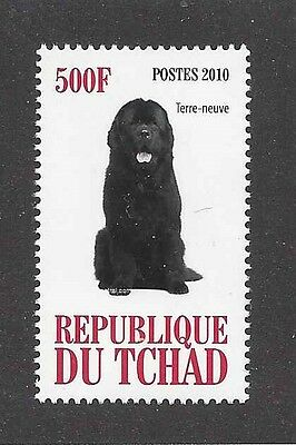 Dog Photo Full Body Portrait Postage Stamp NEWFOUNDLAND Chad Africa 2010 MNH